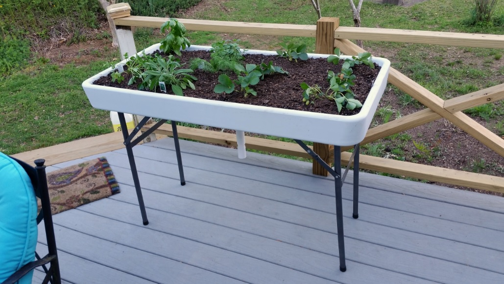 Click image for larger version  Name:Leah's Table Garden.jpg Views:18 Size:233.8 KB ID:15954